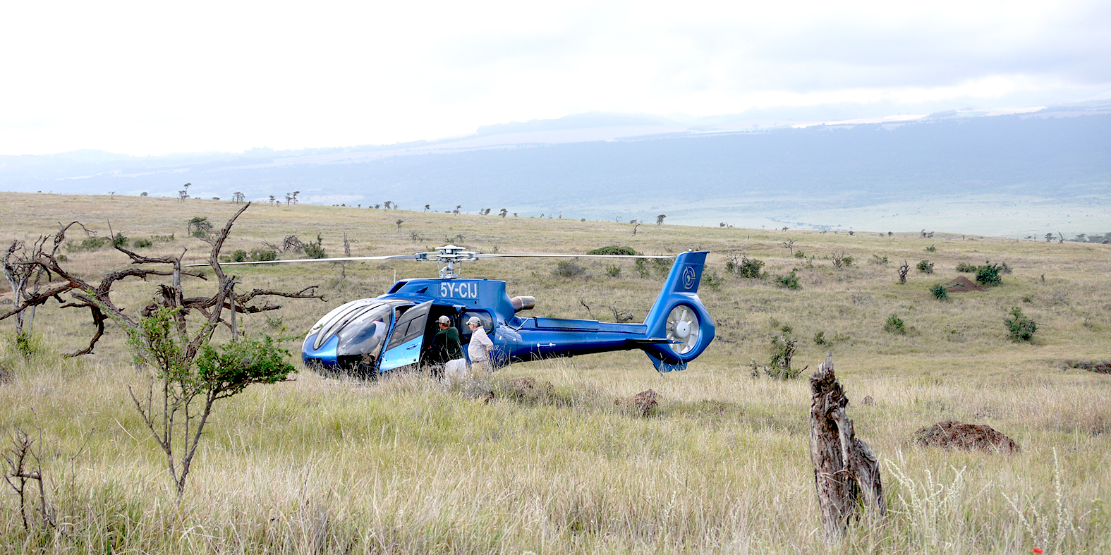 H130 helicopter at Lewa