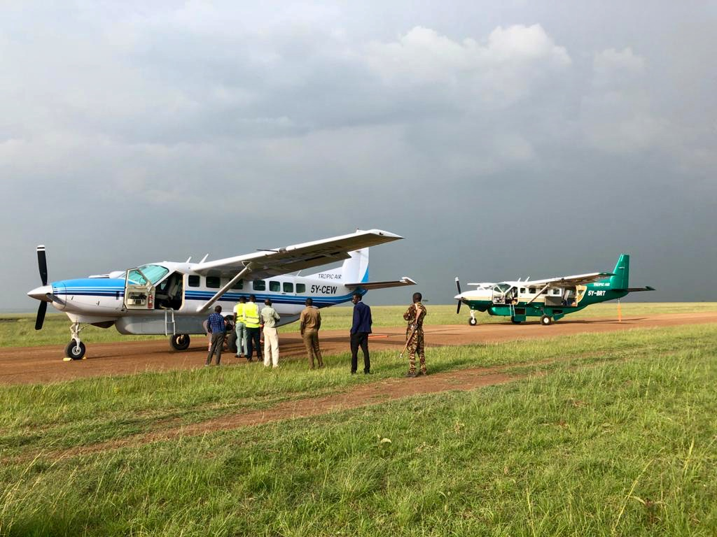 Cessna Caravans in the Maasai Mara